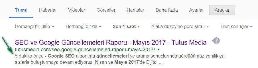 google-index-speed